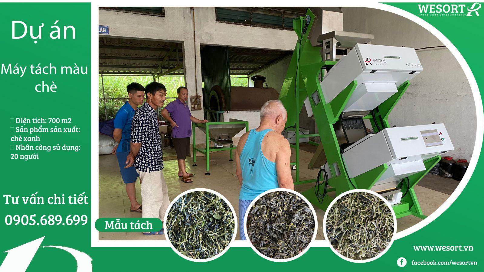 Máy tách màu chè (trà) xanh-dự án Wesort (trung thụy)