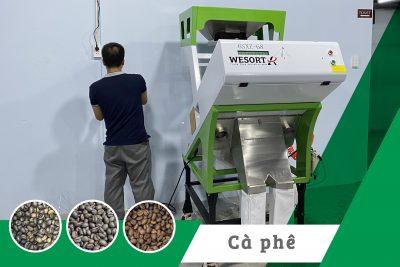 Máy tách màu cà phê rang – dự án lắp đặt thực tế 2020