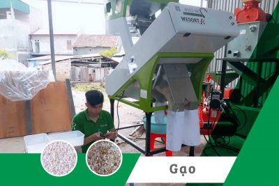 Máy tách màu gạo| Dự án án HTX nông sản sạch Tràng Định