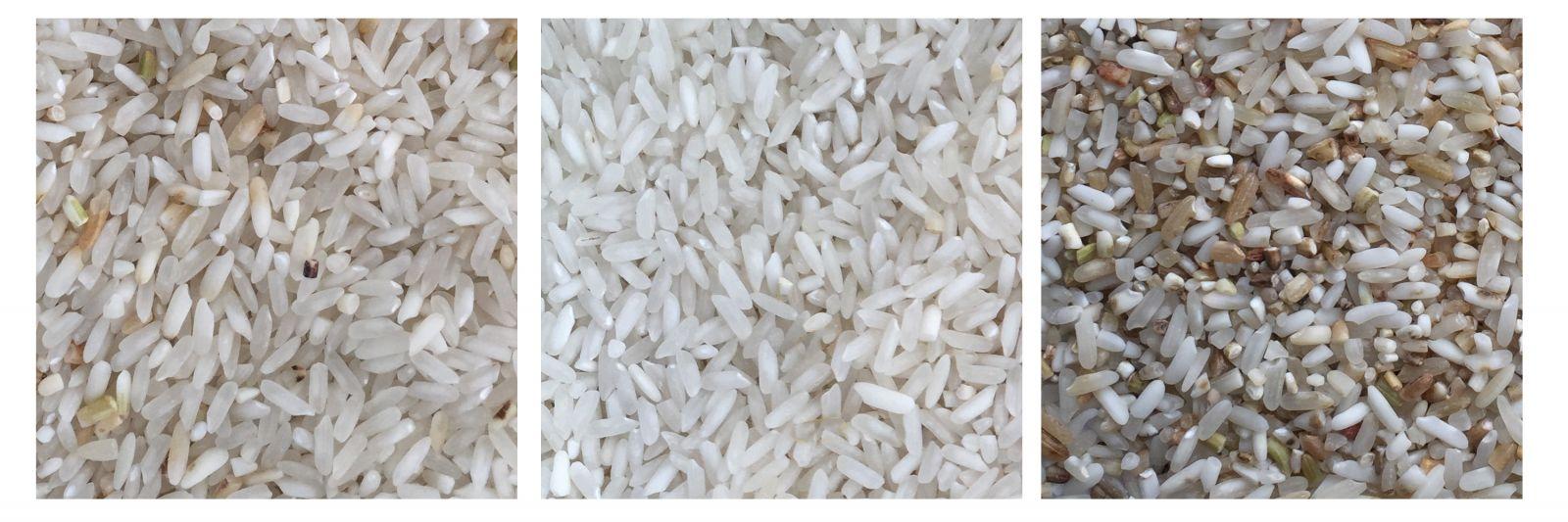 Chế độ tách gạo séng cù