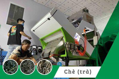 Máy tách màu chè xanh 2020 – Dự án máy tách màu 1 tầng 2 máng.