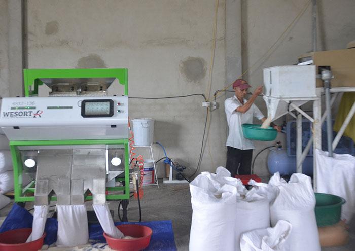Máy tách màu, sản xuất gạo sử dụng công nghệ cao tại hợp tác xã Thanh Yên