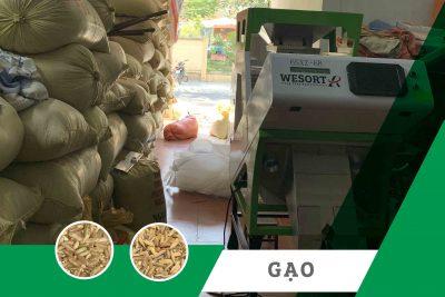 Máy bắn màu gạo| máy tách màu gạo – Dự án nông hộ nhỏ