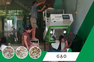 Máy tách màu| Máy bắn màu dành cho gạo tại Điện Biên