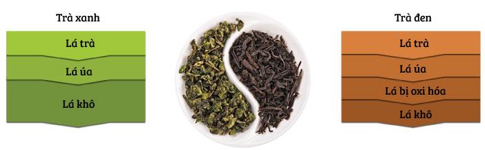 Chế độ phân cấp màu trà